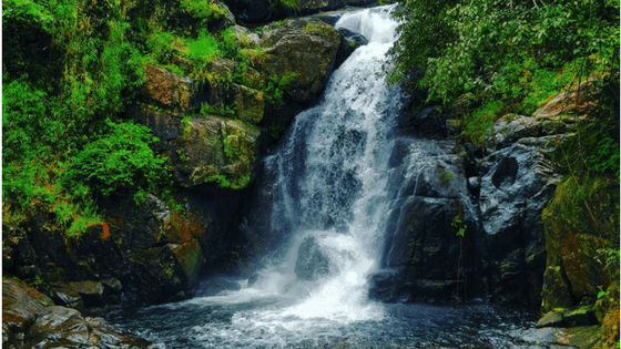 Hiking to Meenmutty Waterfalls in Kerala: Get your Feet on it