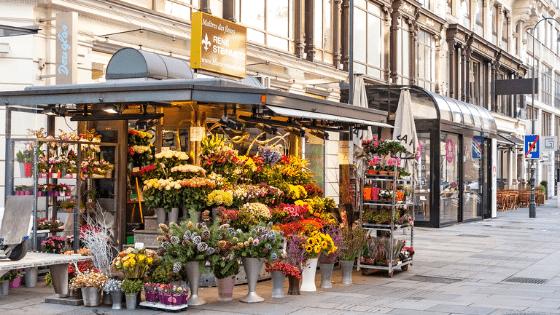 Karntner Strasse Shopping Street-min