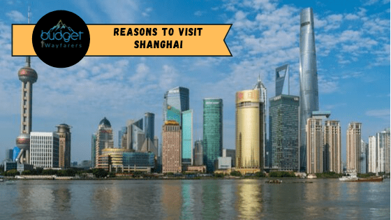 Top Reasons to Visit Shanghai Over Any Other Chinese City