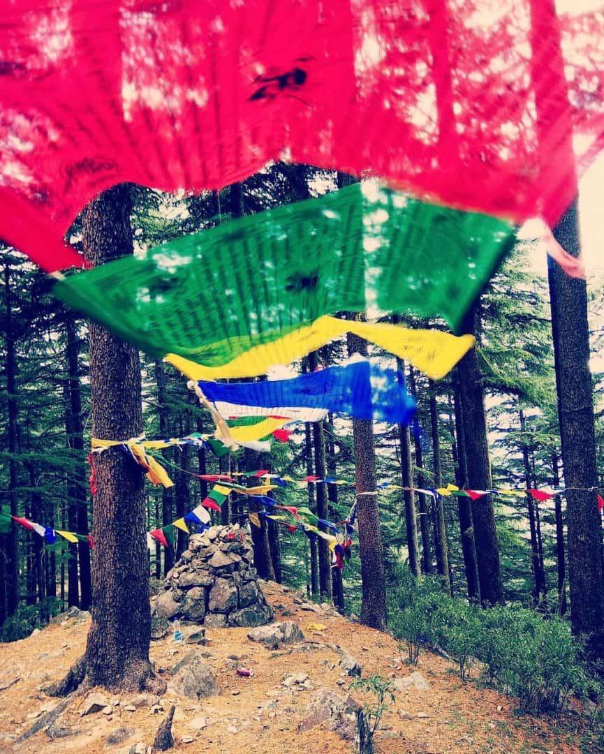 is dharamshala safe