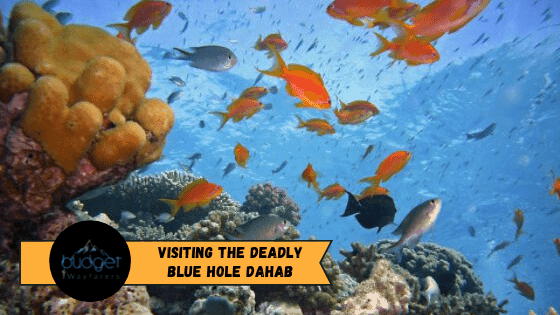 Blue Hole Dahab: Egypt's Deadliest Magnet for Divers