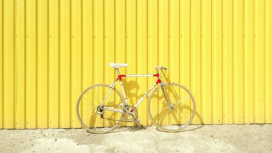biking trip in Amsterdam