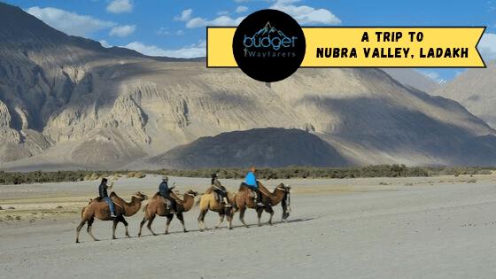 The Splendid Nubra Valley: Ladakh's Own Gateway to Beauty and Splendor
