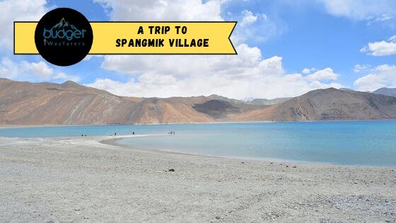 Spangmik Village: The Beautiful Rustic Region Near Pangong Tso