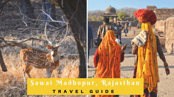 Sawai Madhopur Travel Guide: The Complete 3 Day Itinerary