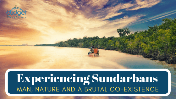Taking a Weekend Tour & Tiger Safari at Sundarbans