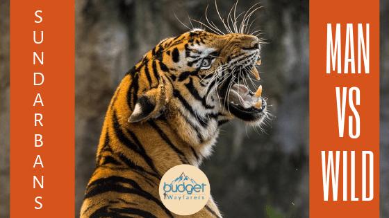Is Sundarban safe