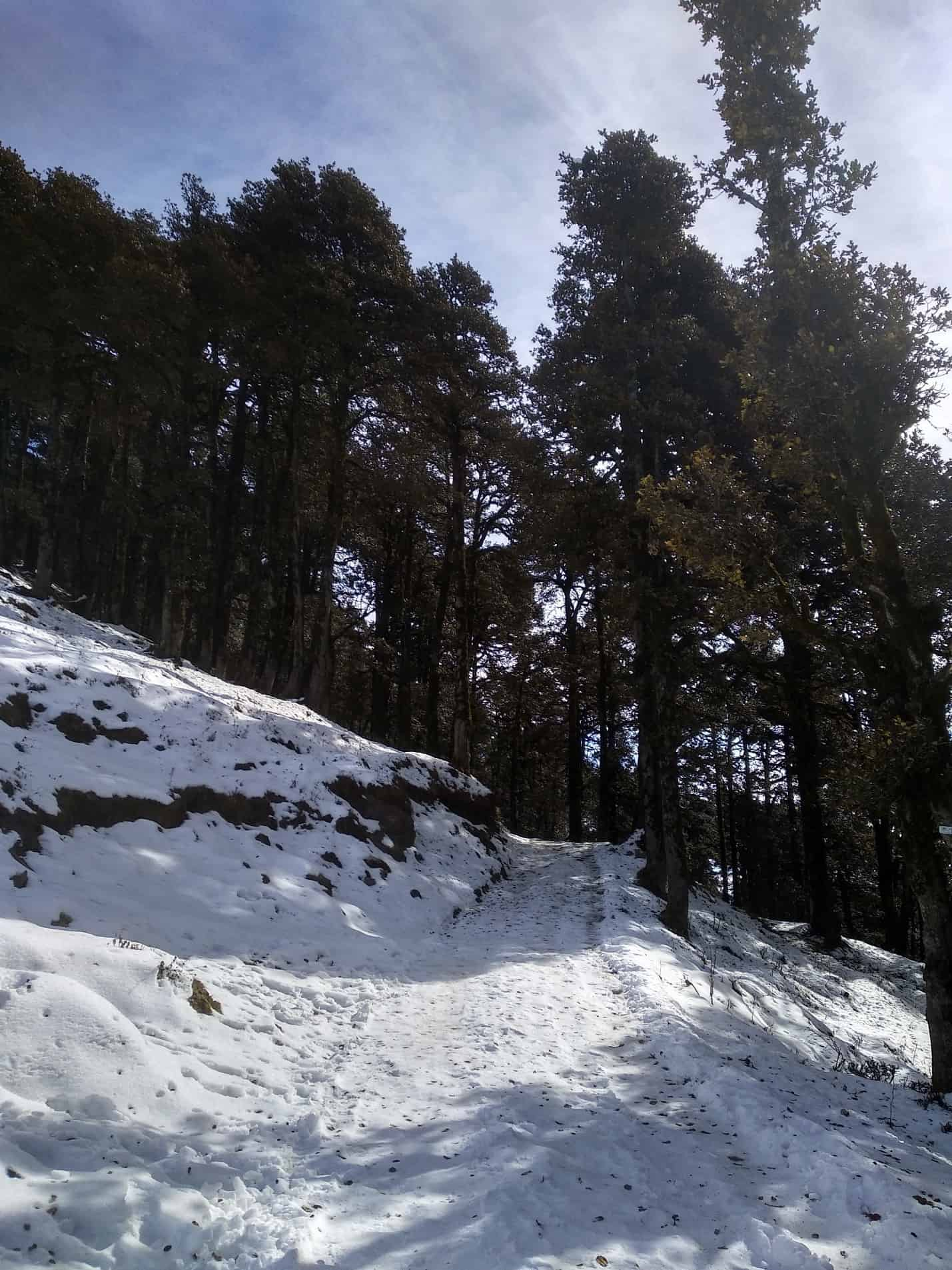 things to do in Tirthan Valley