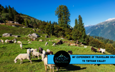 My Amazing Experience of Travelling Solo to Tirthan Valley