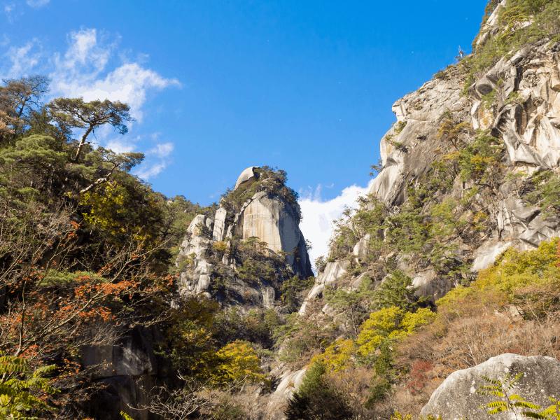 Why Visit Japan blog